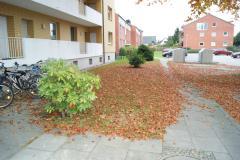 Bild: Barmstedt - Schöne Eigentumswohnung mit Balkon, PKW-Stellplatz und Einbauküche