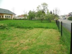 Bild: Mochau - Einfamilienhaus mit Garten und Obstbäumen sucht Familie