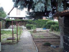 Bild: Maxdorf - Doppelhaushälfte in Maxdorft mit großem Garten