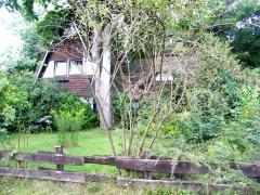 Bild: Holtland - reetgedecktes - exklusives Wohnhaus mit Ferienwohnungen in Ostfriesland