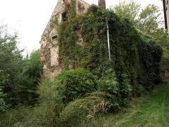 Bild: Grimma - Großes Grundstück an arbeitswütigen Käufer zu verkaufen